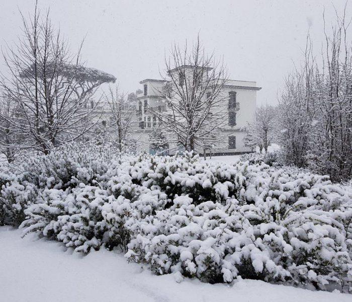 La neve non è stato un ostacolo per il gusto…